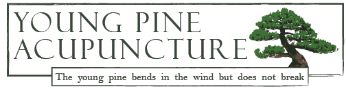 Young Pine Acupuncture